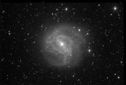 The spiral galaxy M 83. Image taken by participants of the 2016 Girls' Day at Haus der Astronomie with a 0.4 m telescope at Las Cumbres Observatory Global Telescope Network, Siding Spring node (Australia).